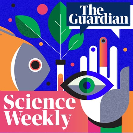 The Guardian Science Weekly Podcast NFTs